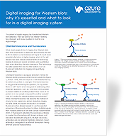 Digital imaging for Western blots: why it's essential and what to look for in a digital imaging system
